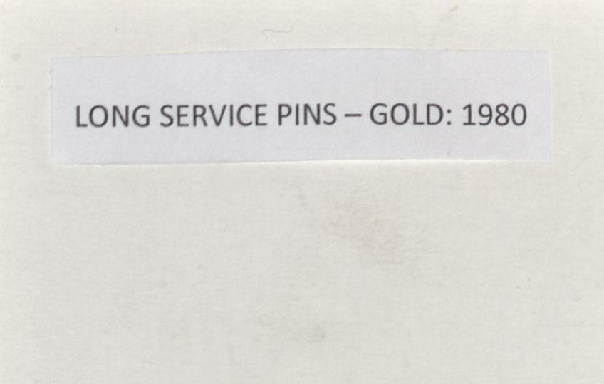 Southern Sun Long Service Awards - Gold Pins